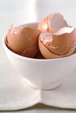 egg shells in bowl