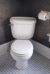 White Western Toilet