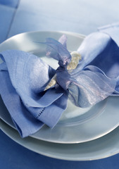 Napkin ring with shell