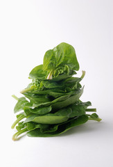 Pile of spinach shoots