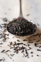 Spoonful of loose black tea