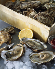 Case of oysters