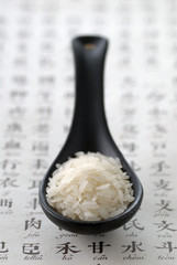 Spoonful of asian rice
