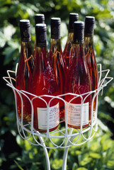 Jardiniére filled with bottles of rosé
