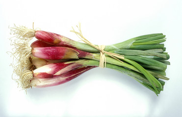 Red shallots from Provence
