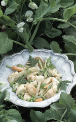 Dish of young spring vegetables with cream sauce