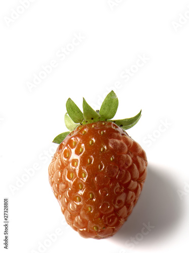Transgenic strawberry-raspberry