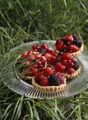 Summer fruit tartlet
