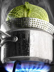 Steam cooking a cabbage in a saucepan on a gas cooker