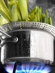 Steam cooking leeks in a saucepan on a gas cooker