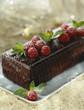 Chocolate and raspberry log cake