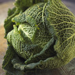 Curly cabbage