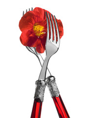 Two forks with red nasturtium