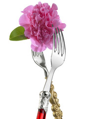 Two forks with flower:wedding meal