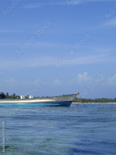 blue boat anchor on shallow shore water