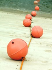 The line of buoys on sea started on the beach