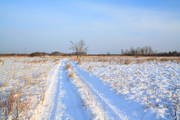 rural road through winter field