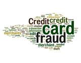 Credit card fraud poster