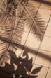 Vacances été zen terrasse jardin détente véranda ombres