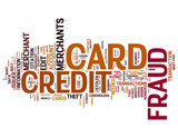 Credit Card Fraud concepts on white background poster