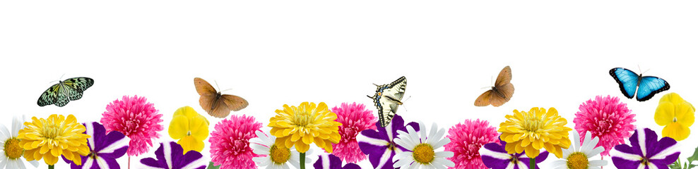 Border of flowers and butterflies
