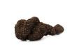 Truffle Tuber melanosporum mushroom - 27359681