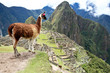Ancient Inca lost city Machu Picchu, Peru. - 27362085