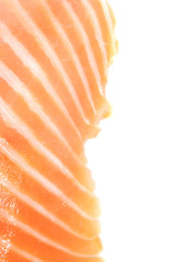 Salmon Fillet on White Background