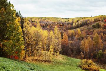 Осенний пеизаж