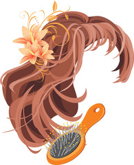 Wig and hairbrush. Vector