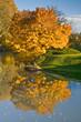 Dole (Jura) - Couleurs d'automne