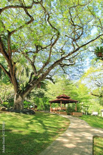 Tropical Park Garden