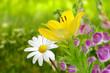 Blumen 188