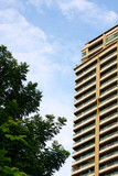 Tall condominium or apartment and tree poster