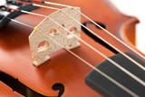 Strings of violin poster