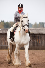 Young woman riding shire horse i
