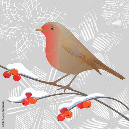 Robin and snowflakes