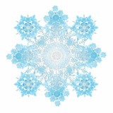 Big lacy snowflake on white poster