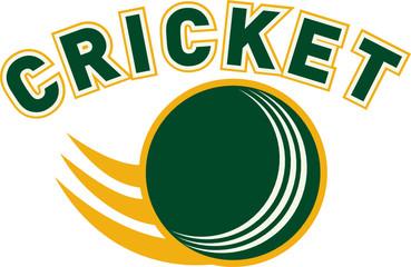 cricket sports ball flying