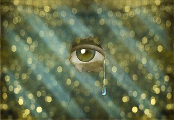 High Resolution Eye