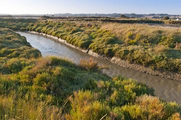 Canal principal (étier) dans les marais salants de Guérande