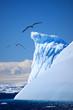 Antarctic iceberg - 27418639