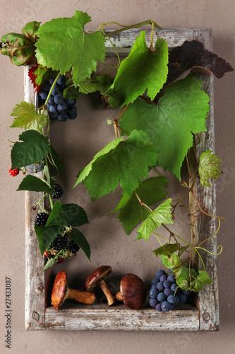 Herbst Wein Pilze Brommbeeren Dekoration Stockfotos Und