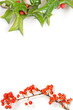 Christmas framework with holly berry isolated on white