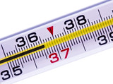 Thermometer of a body normal temperature poster