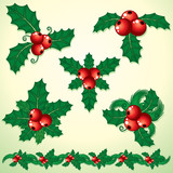 Holly Decorative vector Elements