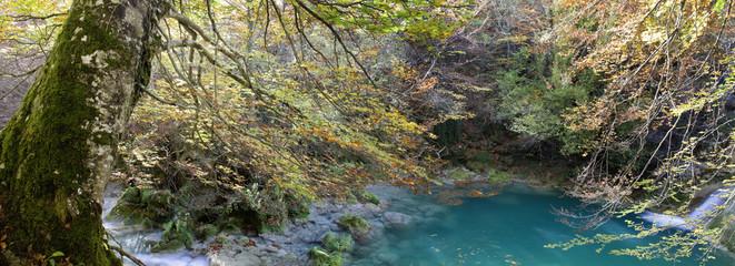 Rincon del bosque (panorama)