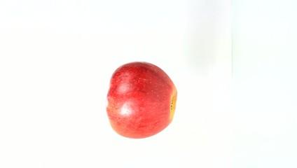 Einer