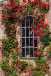 Leinwandbild Motiv Dornröschen-Fenster