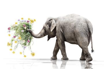 Blumen für dich 111110-1